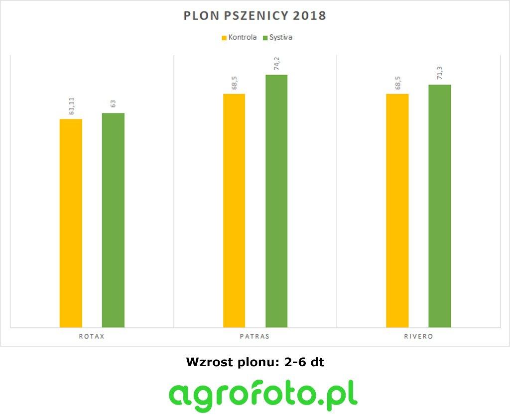 Plonowanie pszenicy 2018 z systiva