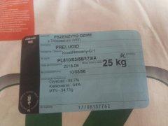 pszenżyto ozime preludio 205zł/100kg