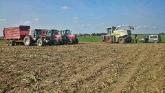 3x MF & Claas Jaguar 860