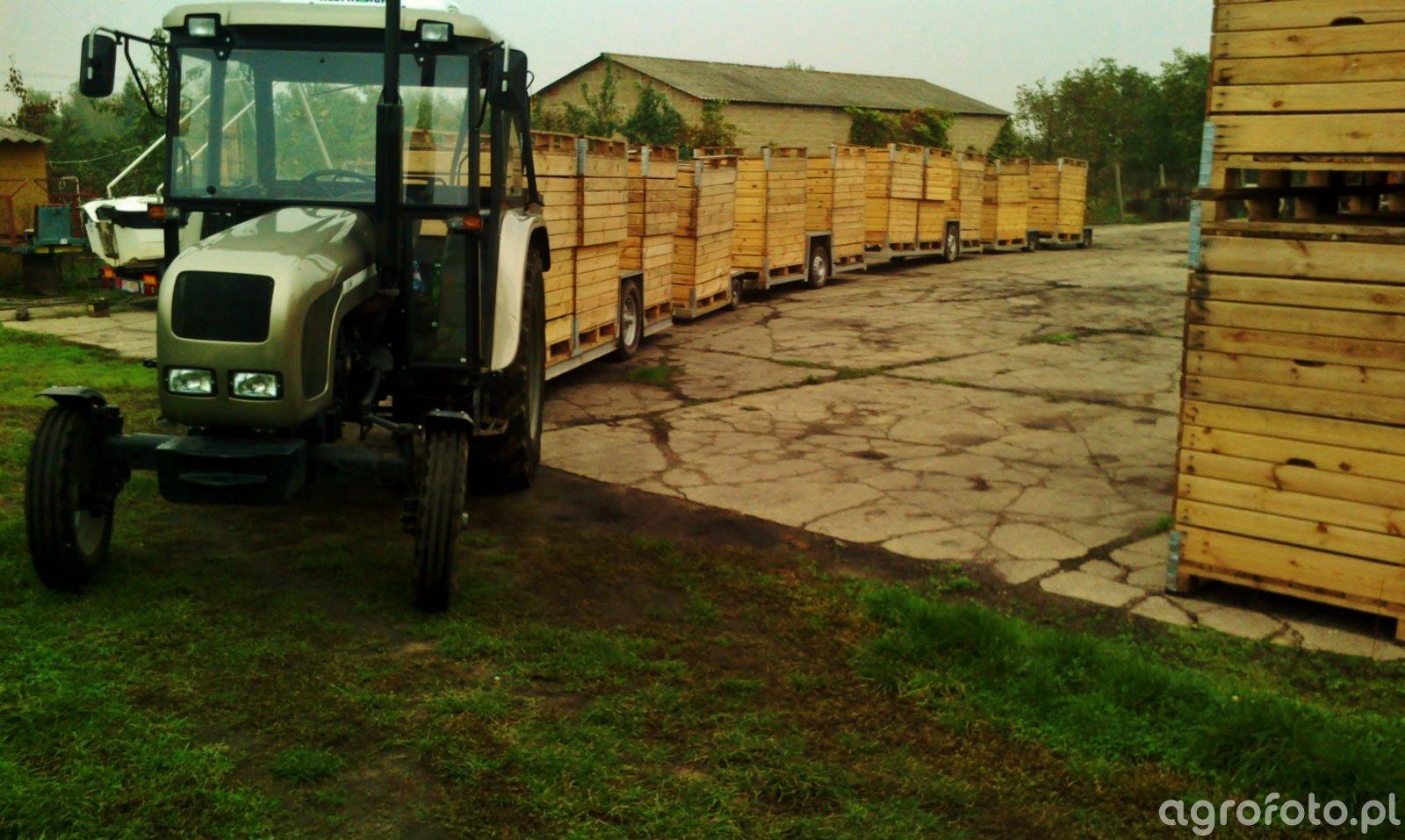 Ursus C-360 & zestaw sadowniczy
