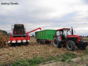 Bizon Super Z056 & Ursus 1014