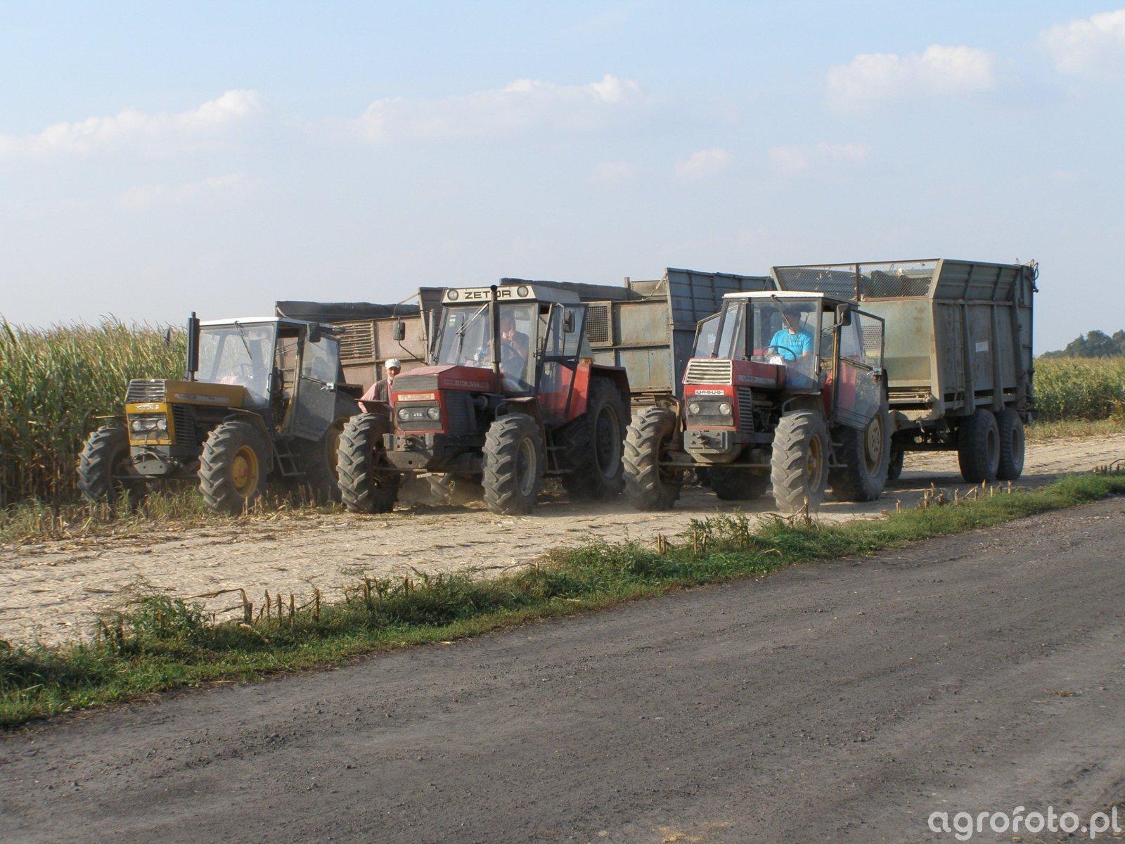 Akcja Kukurydza 2014 Brzysko-Rol