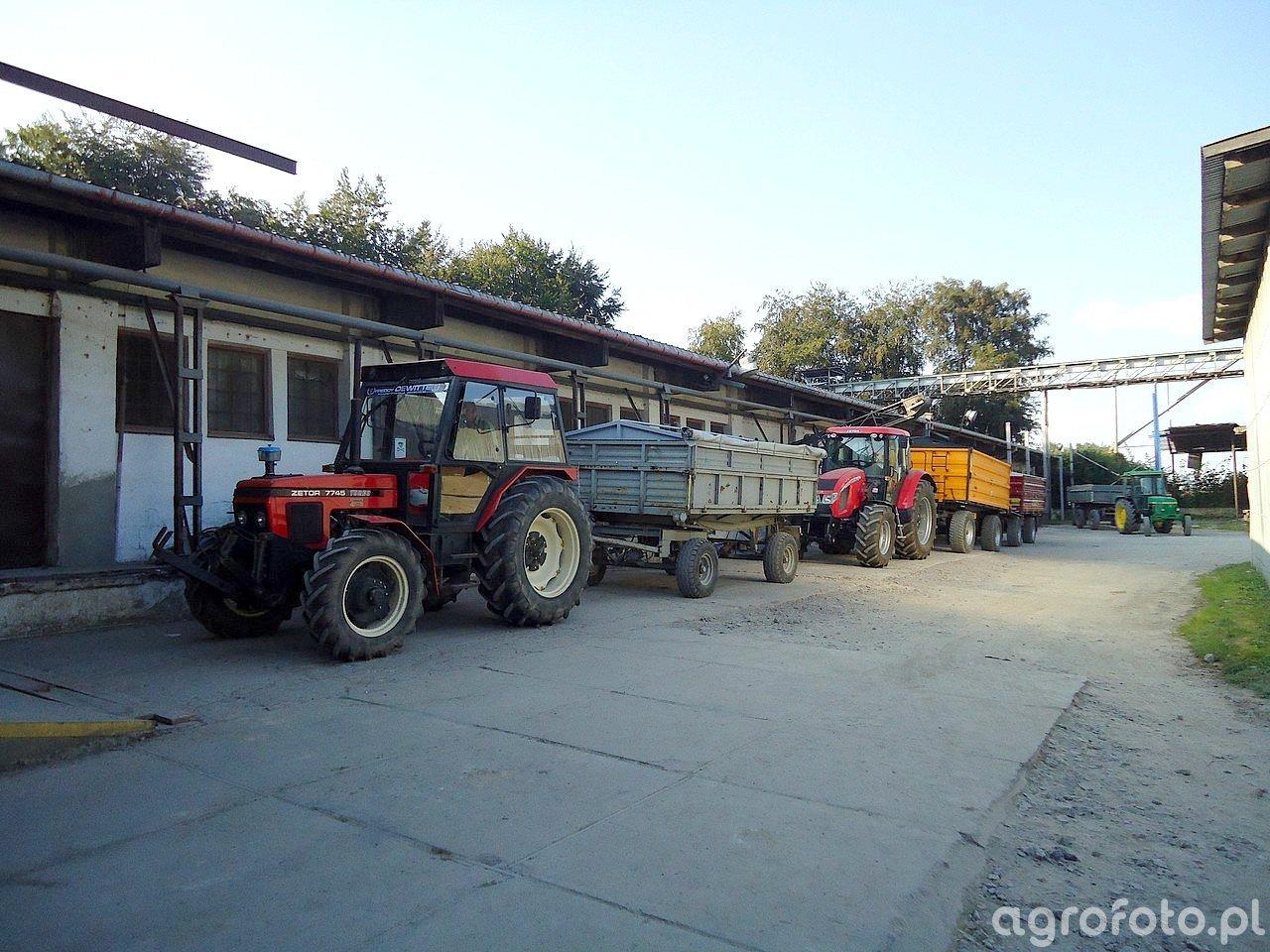 Zetor 7745 Turbo + Sanok & Forterra 115 + Wielton + Zasław