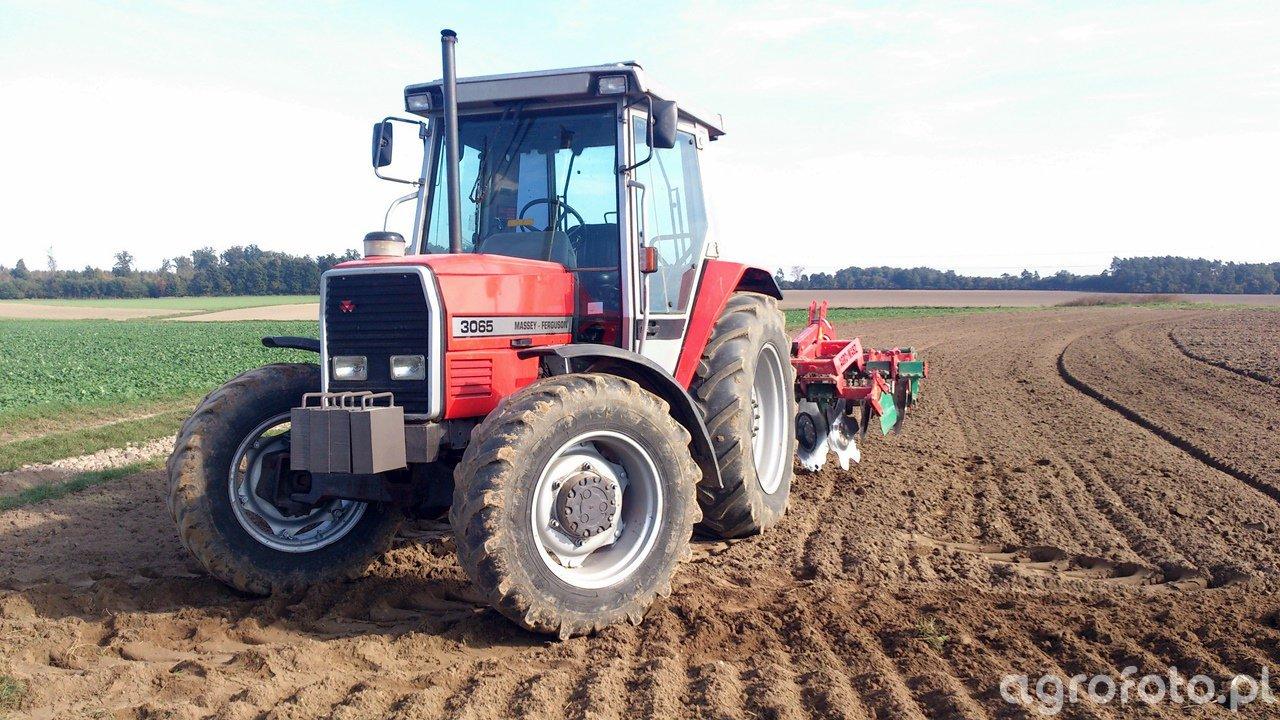Massey Ferguson 3065 i Agro-Masz BT30