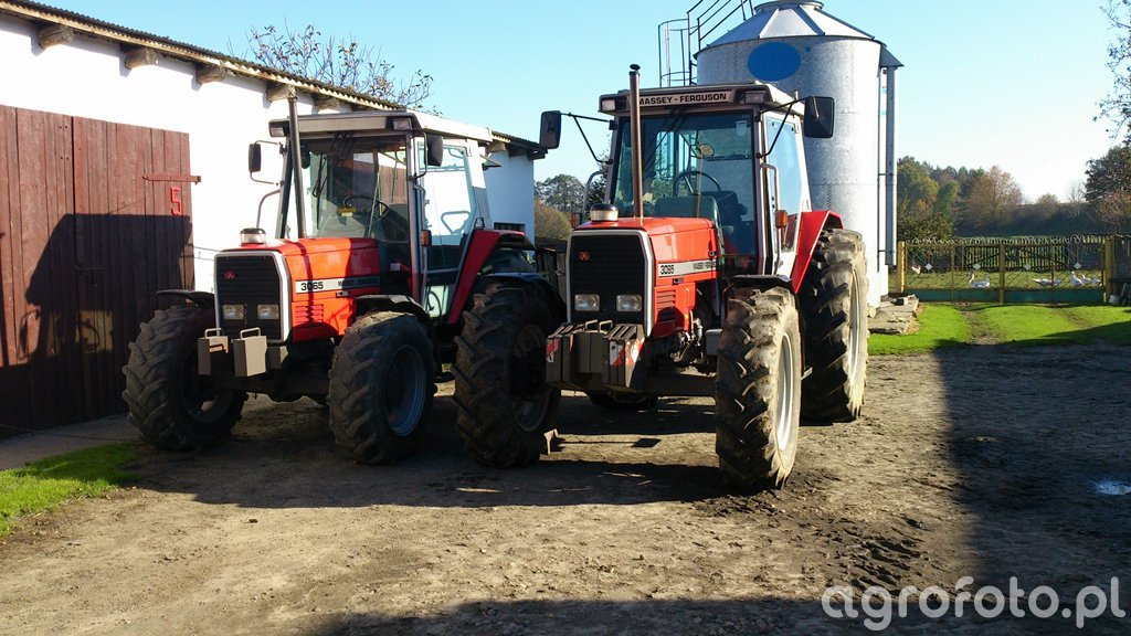 Massey Ferguson 3065 & 3095