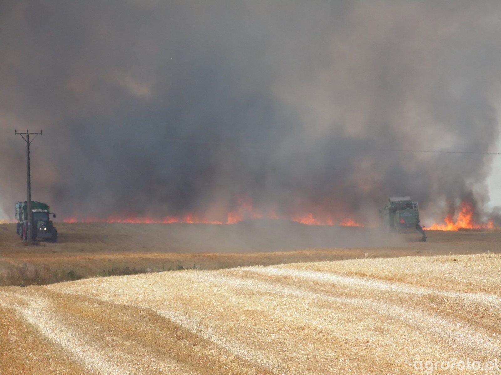 Pożar Pszenicy w Terebińcu
