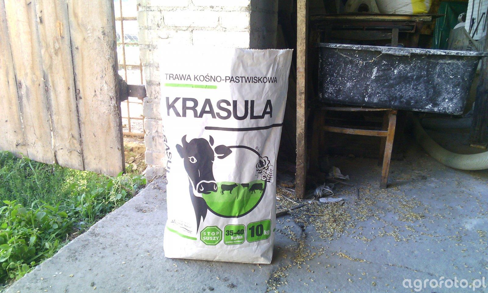 Sowul Krasula