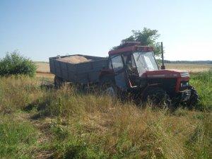 Ursus 914 & Przyczepa
