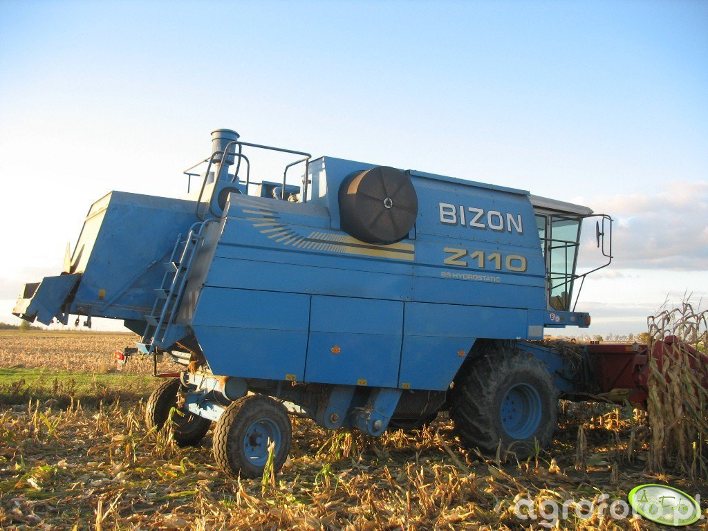 Kombajn Bizon BS Z110 + Geringhoff - zdjęcie #396164