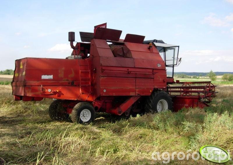 Bizon Gigant Z083