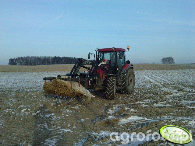 Case z kukurydzą