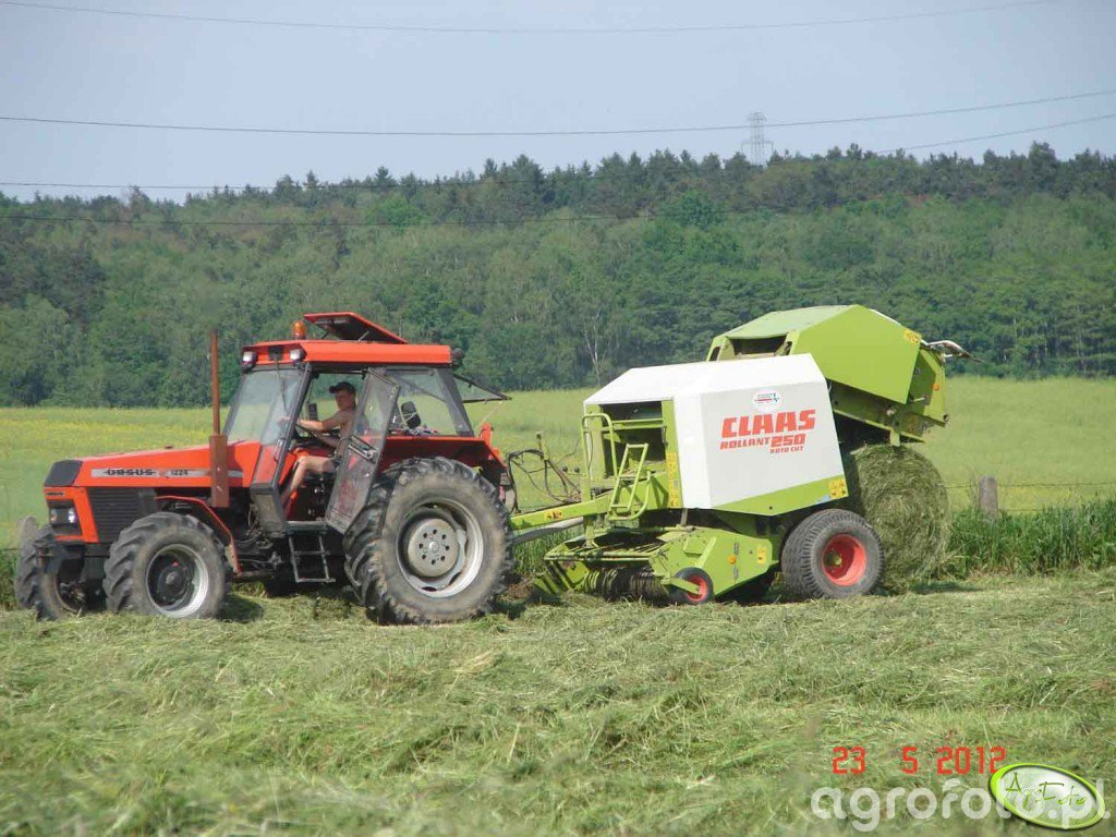 Claas Rollant 250rc