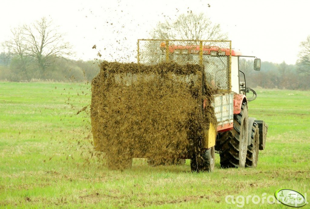 """Rozrzutnik """"Zbych"""" + Farmer 8244 C2"""