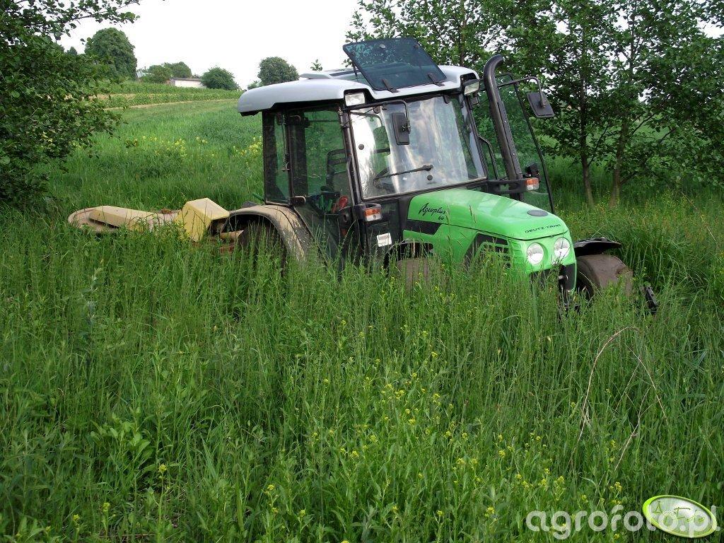 DF AgroPlus 60