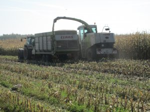 Fendt Farmer 311 & Claas sprint 440s & Claas Jaguar 840