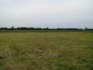 Lubelskie łąki