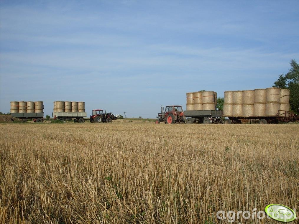 Farmer 8244 C2 i Zetor 12011