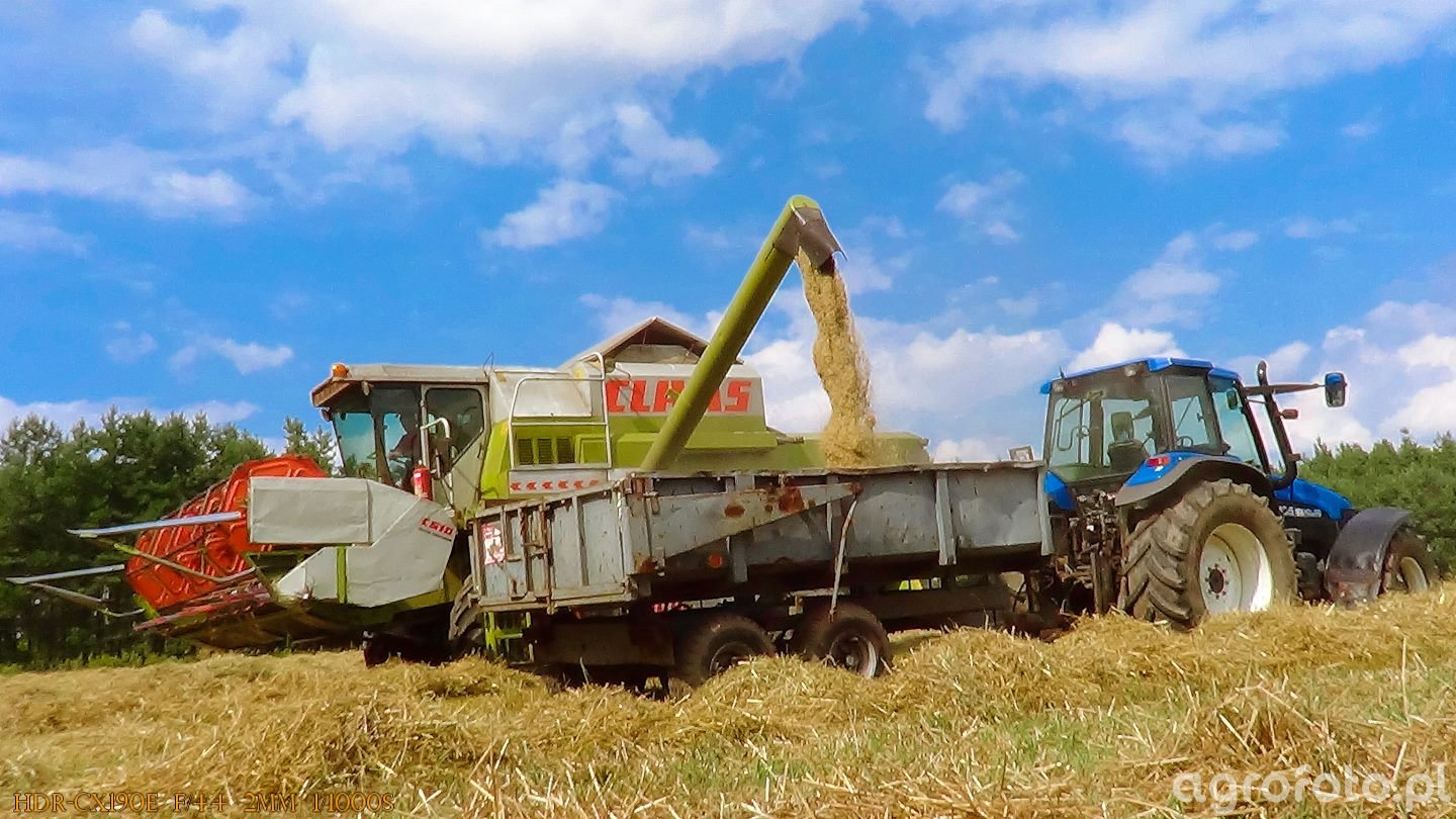 Claas Dominator 108sl & New Holland TM 135