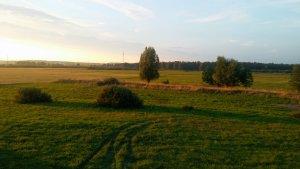 Łąki nad Notecią