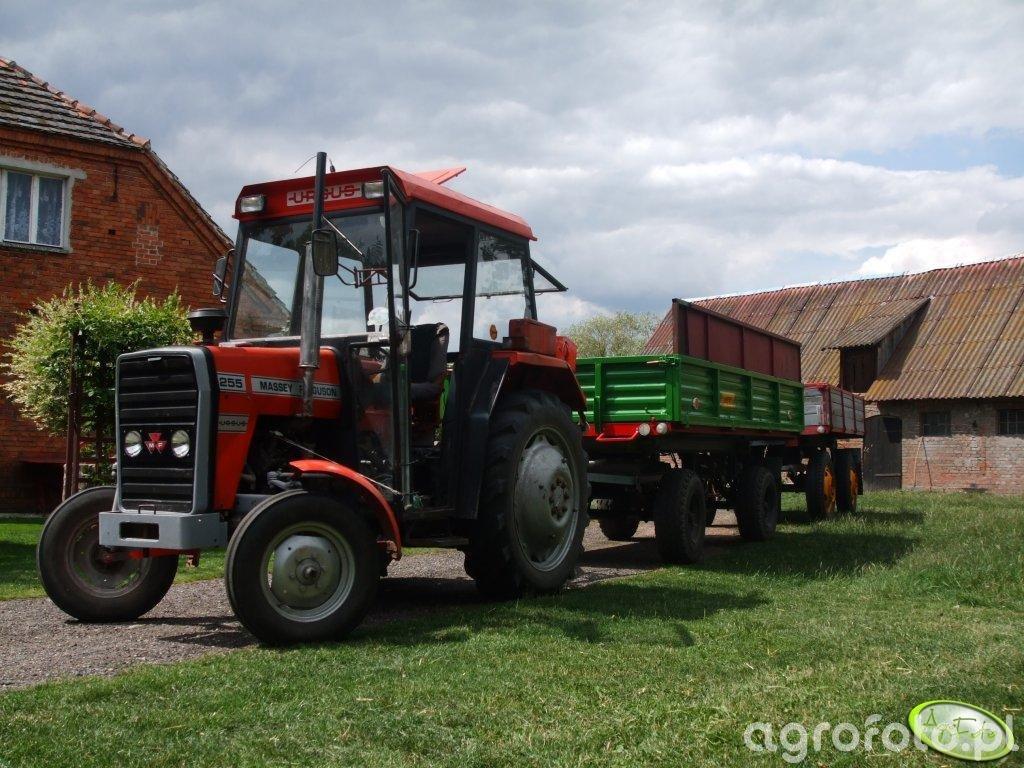 MF 255 + Autosan D732 + Międzyrzecze