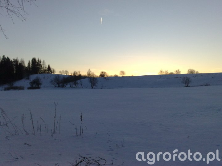 Zima w polu