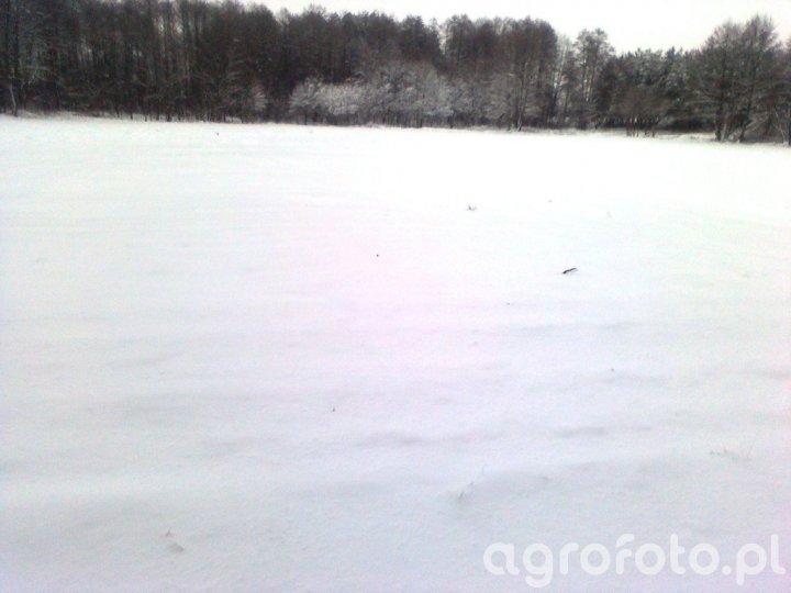 Zima w Łódzkim