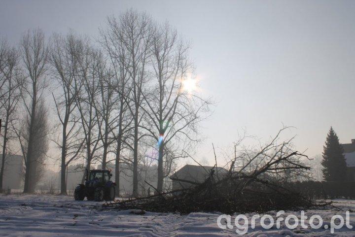 New Holland T6.155 - wycinka drzew