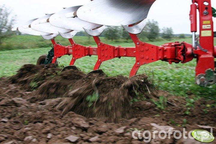 Vogel Noot XM950