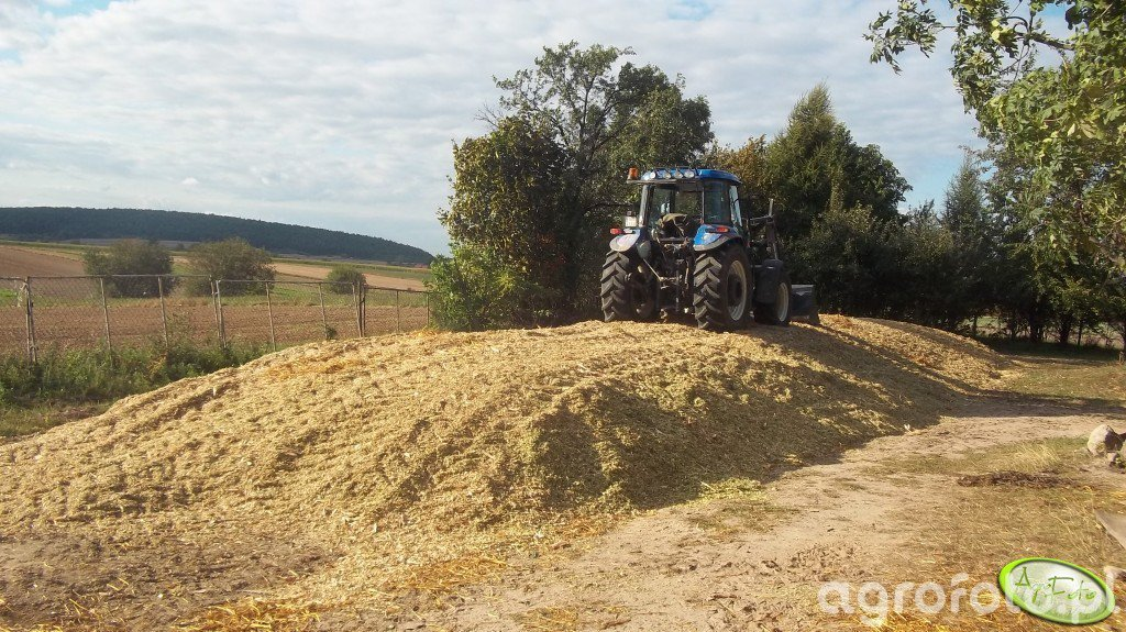 New Holland TD5030