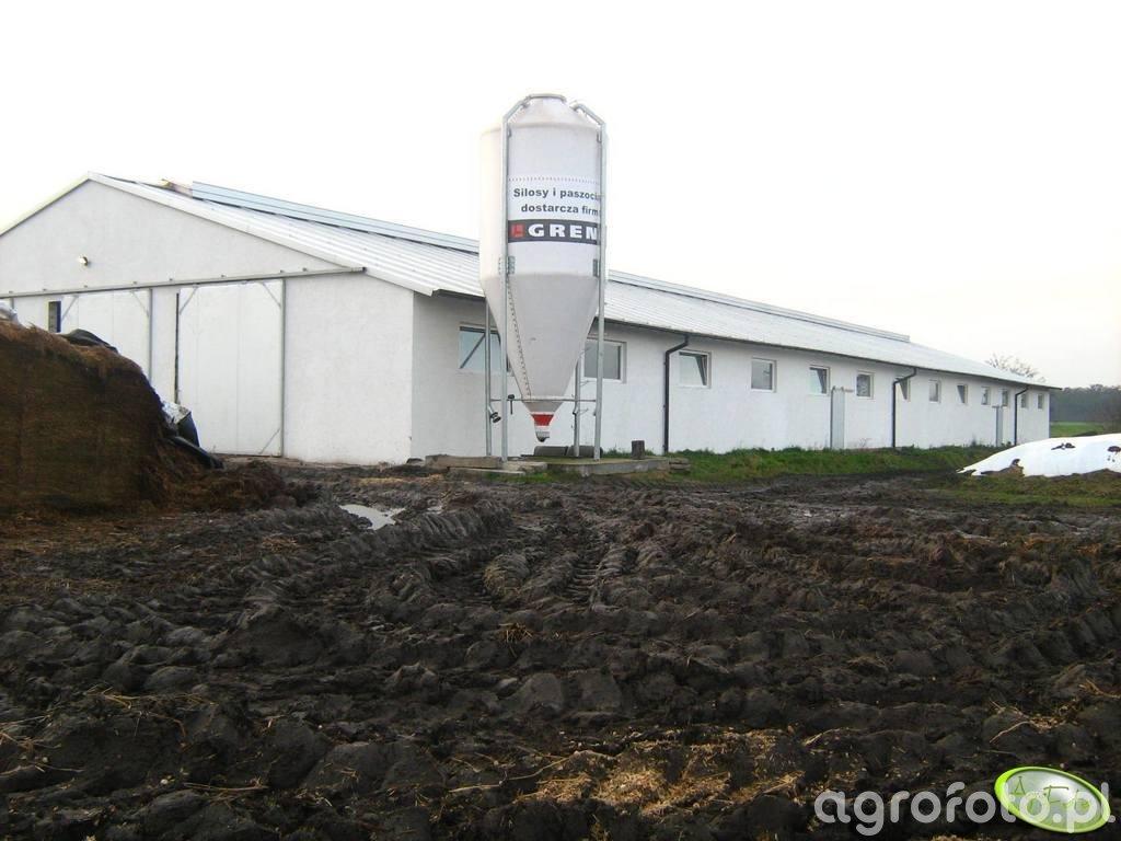 Obora na 100 krów