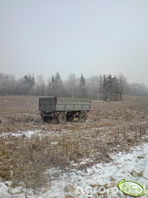 przeczepa z kukurydza
