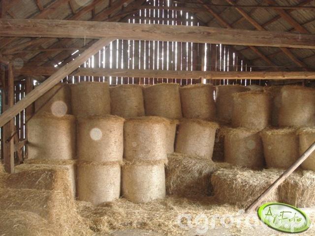Snopki w stodole