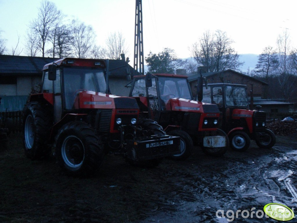 Ursus 1224, c385 i MF255