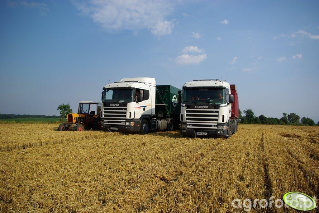 Ursus 330M i 2 Scanie 124L i 144L czekające na pszeniczkę