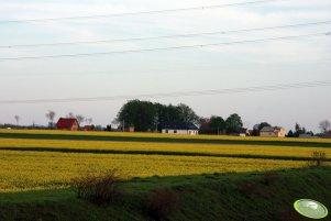 Widok na wieś