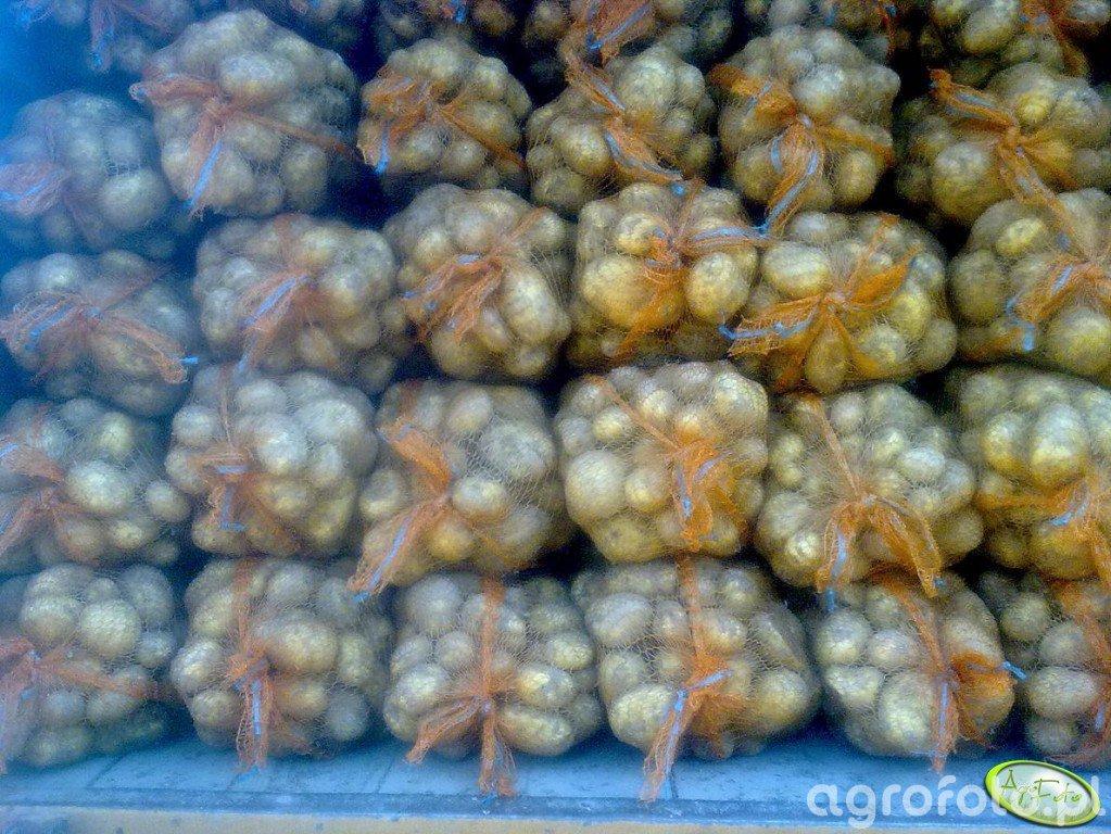 Ziemniaki Denar