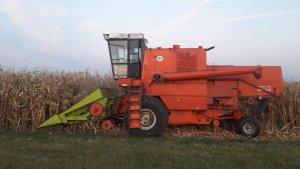 Kukurydza na ziarno