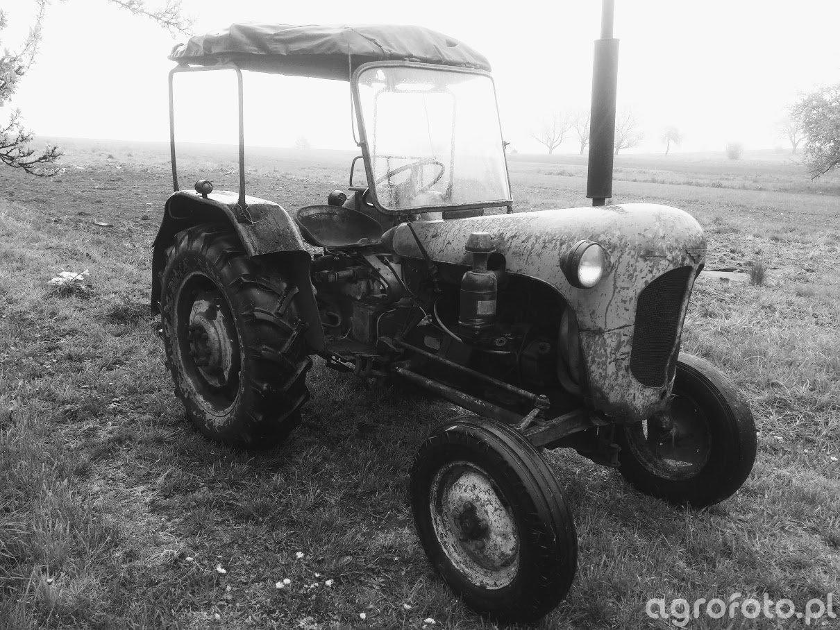 Foto Traktor Ursus C 328 Id 747982 Galeria Rolnicza Agrofoto