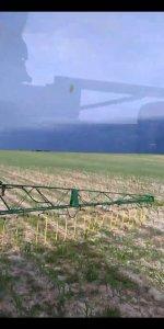 Rozlewanie rsm w kukurydzy