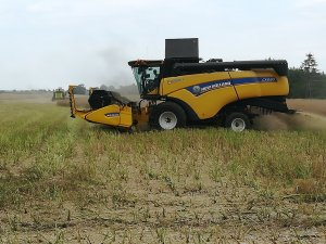 CX 5.80 i Claas Dominator 88
