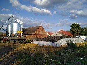 Pryzma z kukurydzy