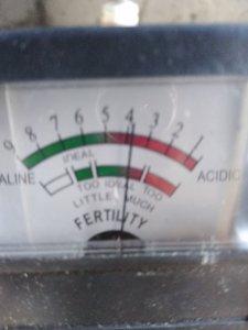 Badanie pH gleby u znajomego