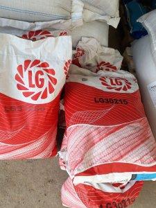Kukurydza LG 30.215