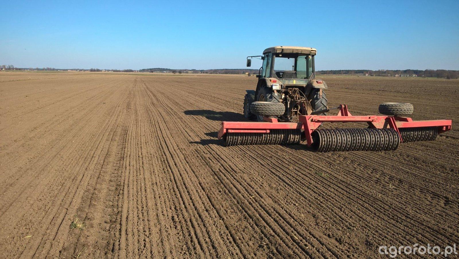 Wałowanie pola