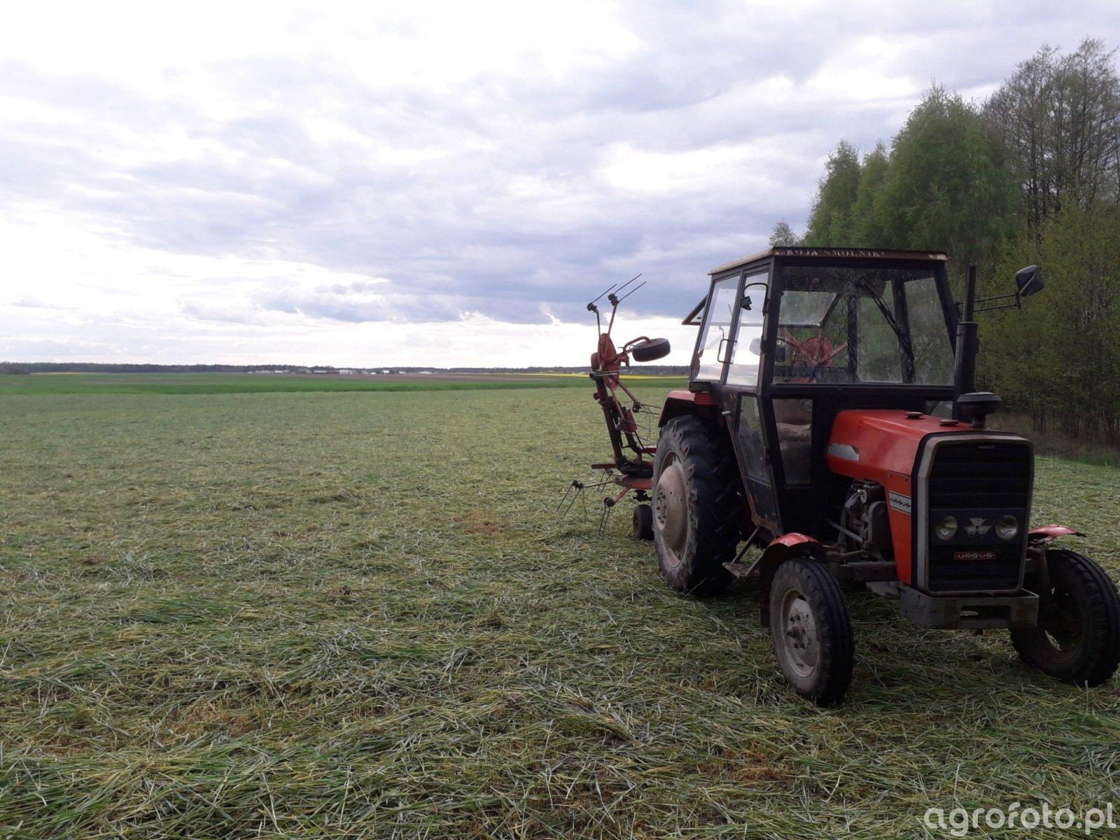 MF 255 + kuhn gf5000