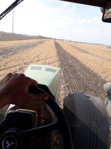 Uprawa bezorkowa pod kukurydzę