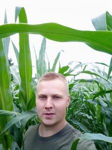 Selfie w kukurydzy 2020