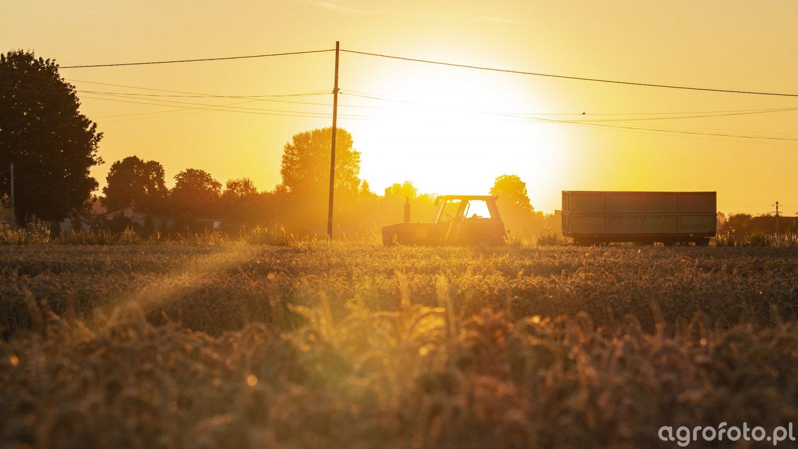 Ursus 912 o zachodzie słońca.