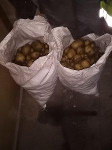 Dwa worki ziemniaków