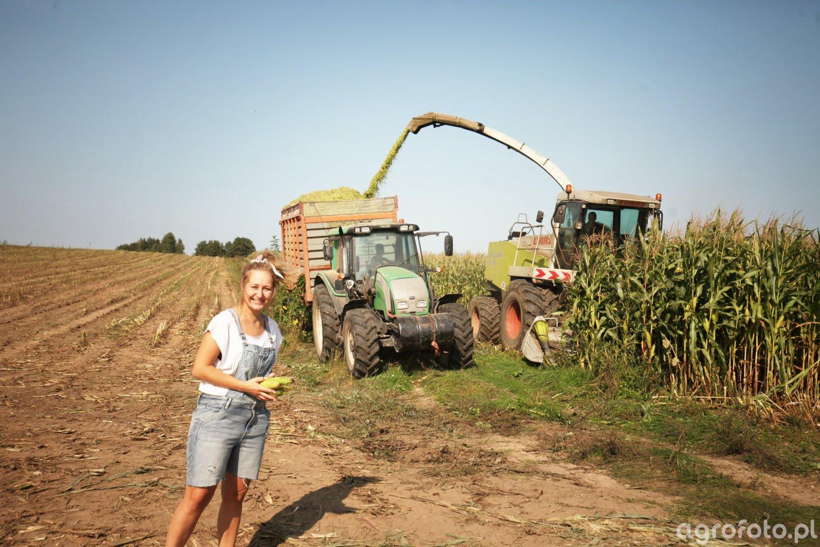 Kukurydza 2020 z Anią.